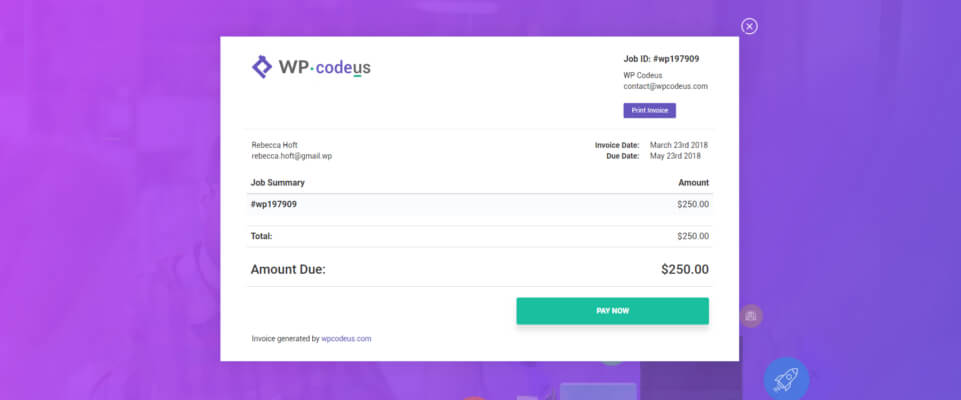 Secure Online Payments - WP Codeus